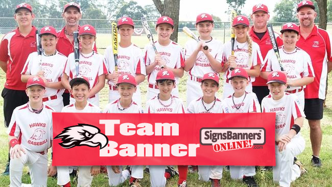 Team banner with logo and sponsor