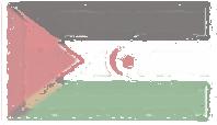 Western Sahara Flag design