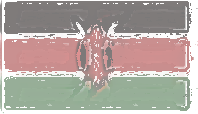 Kenya Flag design