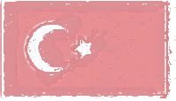 Turkey Flag design
